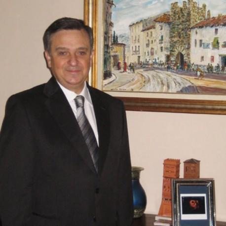 Sr. D. Ángel Gracia Lucia